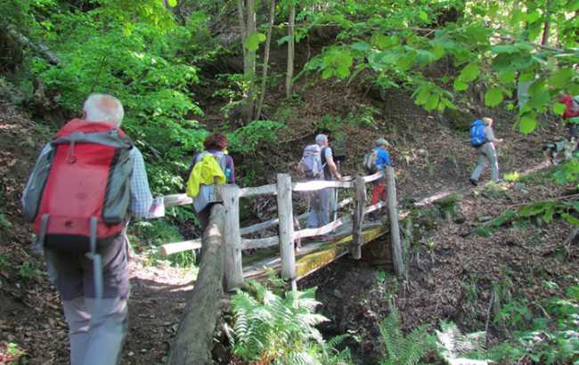 ponte legno sentiero escursione montagna fabbri val bognanco