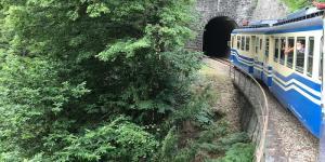 Ferrovia_Vigezzina_Centovalli_-_Treno_storico_-_Centovalli.JPG